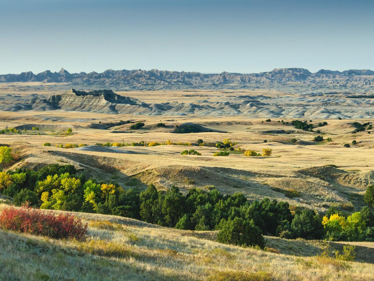 Autumn colors in the Badlands