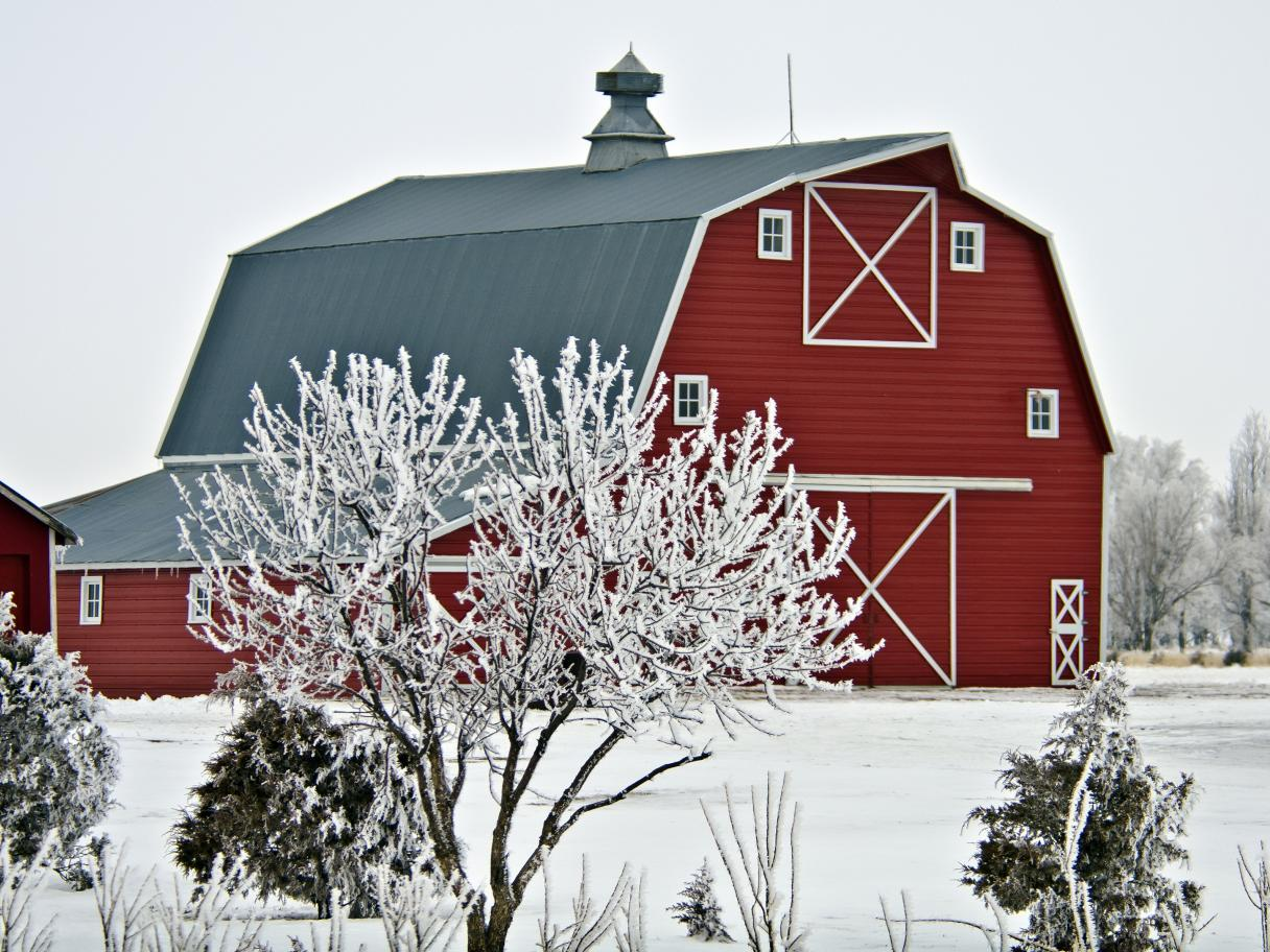 Barn in Winter, Snow