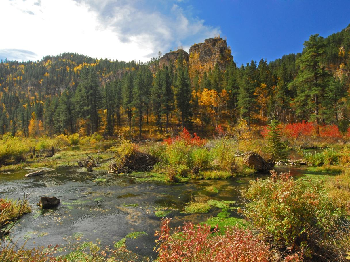 Fall in Spearfish Canyon
