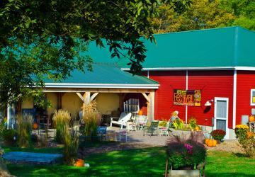 Strawbale Winery Harvest Festival