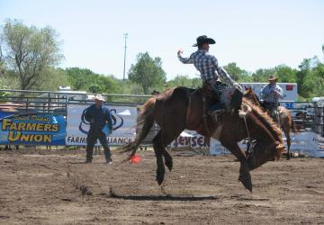 Annual SDRA Foothills Rodeo