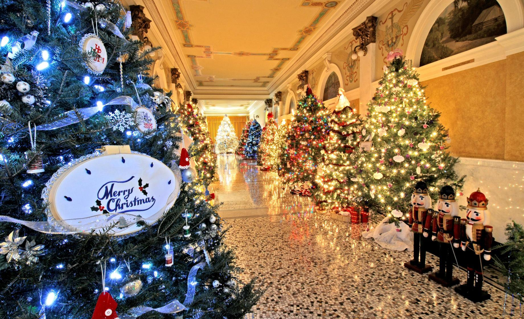 Christmas trees in the halls of the Capitol