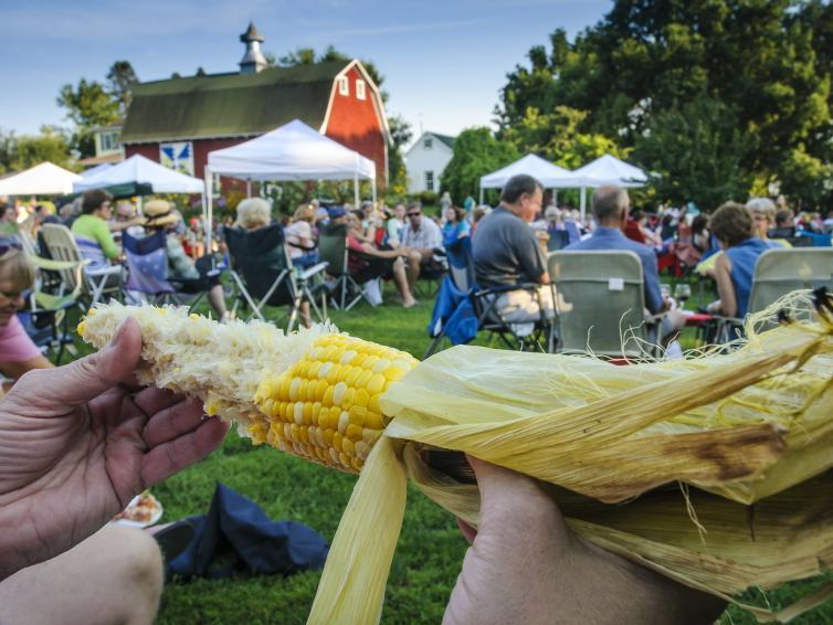 Corn on the cob at Straw Bale Winery