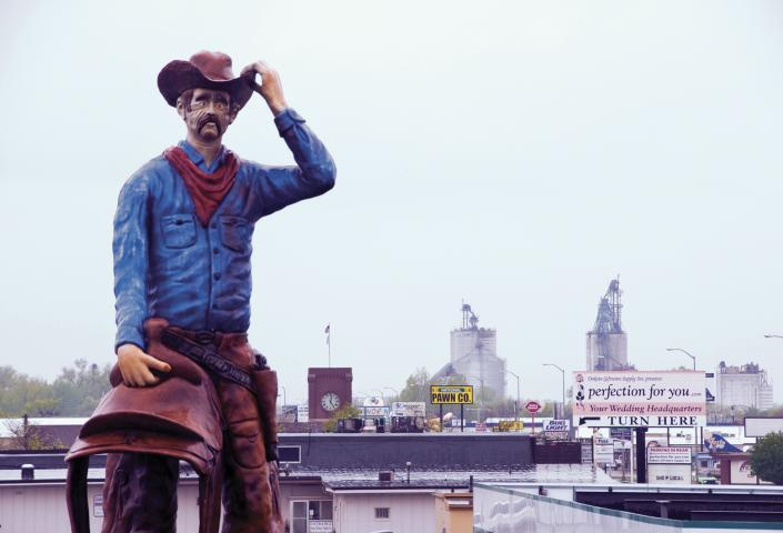 Watertown Cowboy