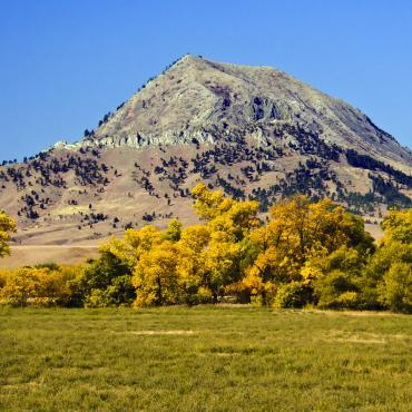 Fall colors at Bear Butte