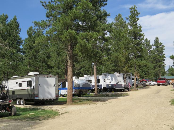 Tree Covered RV Sites
