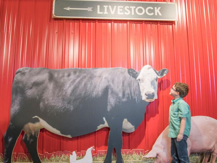 Stockyards Ag Experience