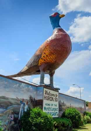 Worlds Largest Pheasant | Highway 14 Huron South Dakota