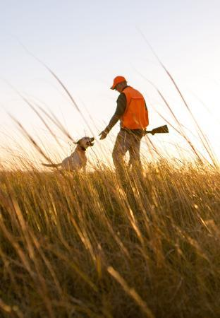 Pheasant Hunter and Dog South Dakota Field Sunset