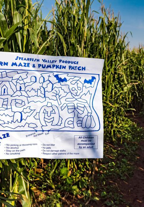Spearfish Corn Maze Map and Trail